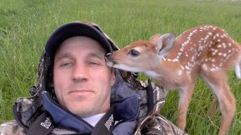 Abandoned Baby Deer Refuses To Leave Man Who Saved Her Life