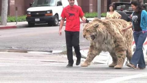 A Saber-toothed Cat Puppet Struts Across Wilshire to the La Brea Tar Pits