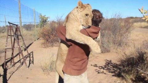 Animals Hugging Their Human Friends