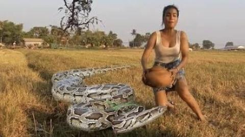 Amazing Brave Girl Catch Snake with Bare Hands