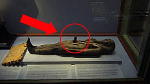 Bizarre Things Found Inside Real Mummies