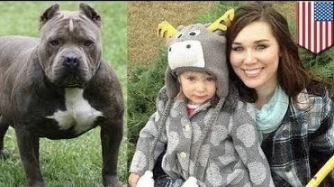 [VIDEO] Woman Bites Off pitbull's Ear To Save Daughter