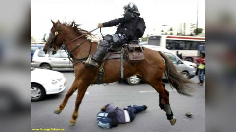 SHOCKING: Don't Mess With A Police Horse