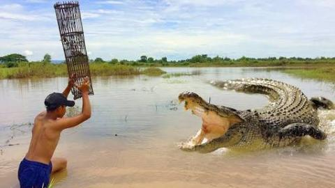 Brave Cambodian Boy Catches Crocodile While Catching Crab