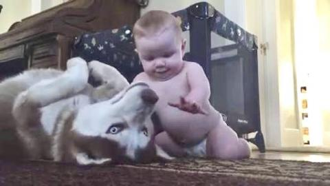 Dog and Baby Show Love For Each Other