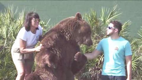 [SHOCKING] Florida Family Raised 14 BEARS In The Garden