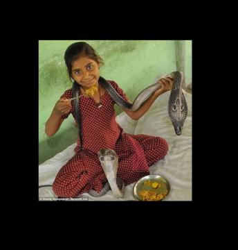 The Incredible Indian Snake Girl Who Lives With Most King Cobra